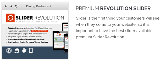 Premium Revolution Slider ($18) for free