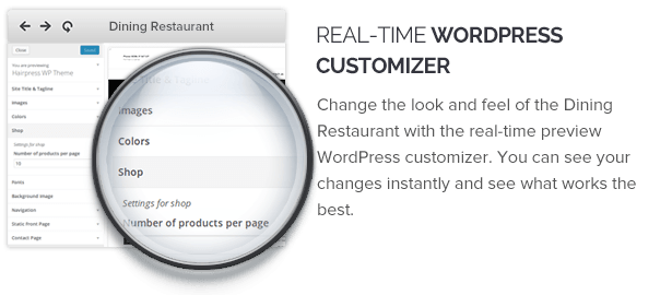 Real Time WordPress Customizer