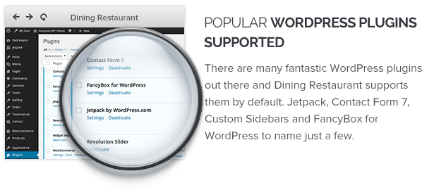 Popular WordPress Plugins Supported