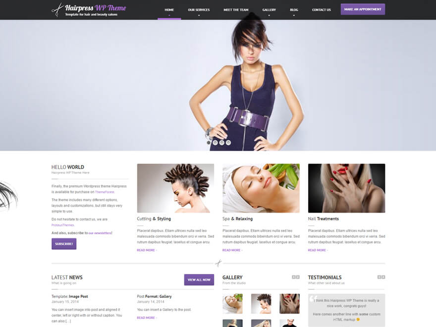 HairPress WordPress Theme
