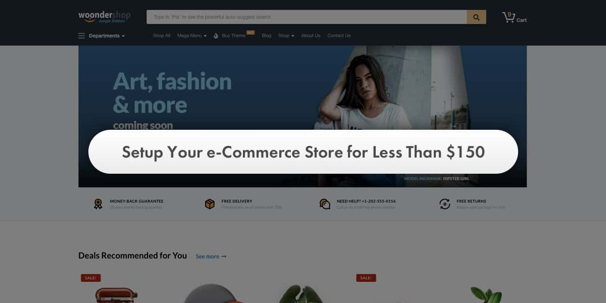 Setup Your e-Commerce Store for Less Than $150